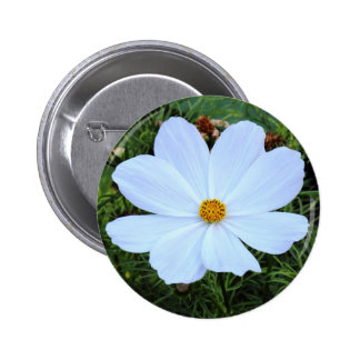 White Cosmos Pinback Buttons