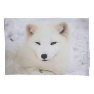 White cute fox in snow looking at you pillowcase