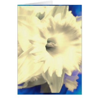 White Daffodil with Blue Fire Blank Greeting Card