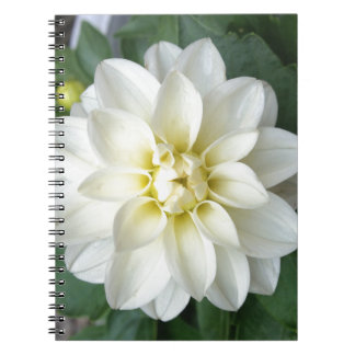 White Dahlia Journal Note Book