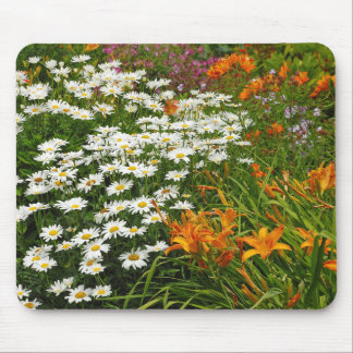 White daisies and orange lilies mouse pad