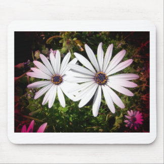 White Daisies Blend Petals Mouse Pad