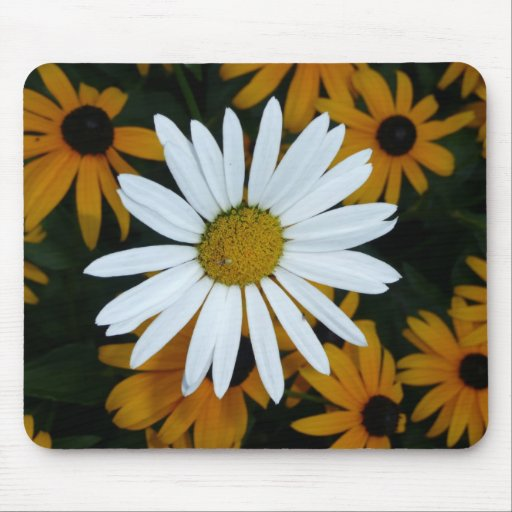 White Daisy and Blackeyed Susans Mousepad