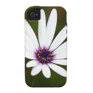 White daisy iPhone 4 case