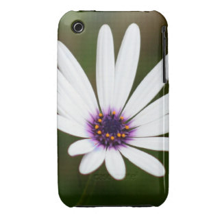 White daisy iPhone 3 cover