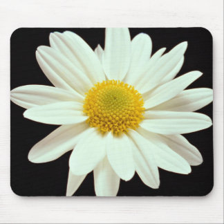 White daisy chrysanthemum mousepad