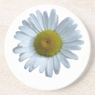 White Daisy Coaster