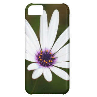 White daisy cover for iPhone 5C