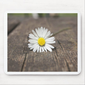 White Daisy Flower Mouse Pads
