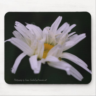 White Daisy Flower Photography Mousepad