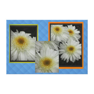White Daisy Flowers Canvas Prints