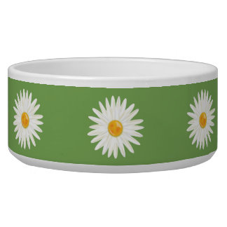White Daisy Flowers On Green
