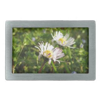 White daisy flowers on green background belt buckles