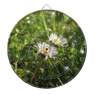 White daisy flowers on green background dartboard