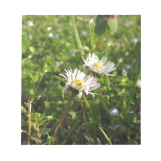 White daisy flowers on green background notepad
