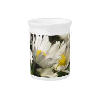 White daisy flowers on green background pitcher