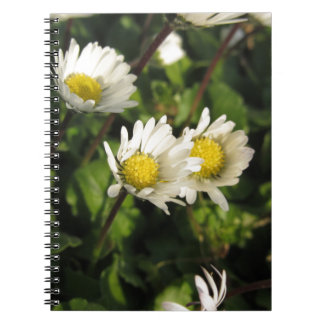 White daisy flowers on green background spiral notebook