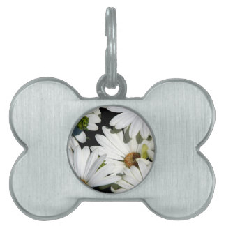 White Daisy Flowers Pet Name Tag