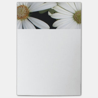 White Daisy Flowers Post-it Notes