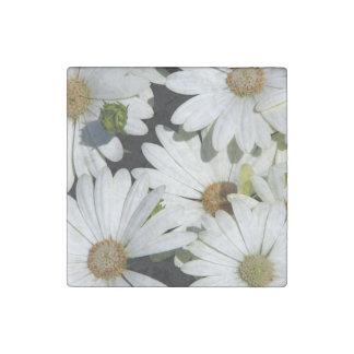 White Daisy Flowers Stone Magnet