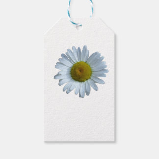 White Daisy Gift Tags