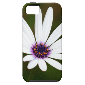 White daisy iPhone 5 case