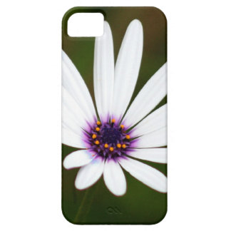 White daisy iPhone 5 cover