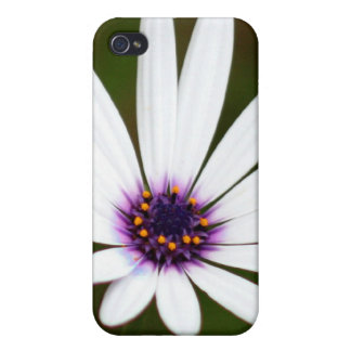 White daisy iPhone 4/4S case