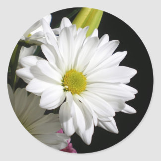 White Daisy Lily Round Sticker