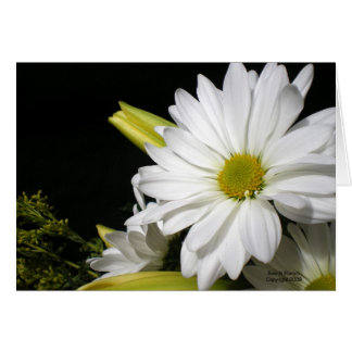 White Daisy Lily Vertical Greeting Card