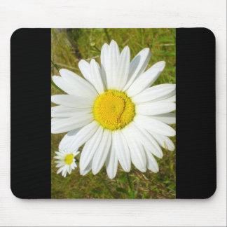 White Daisy Mousepads