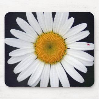 white daisy mousepad