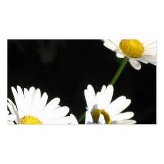 White Daisy Pack Of Standard Business Cards