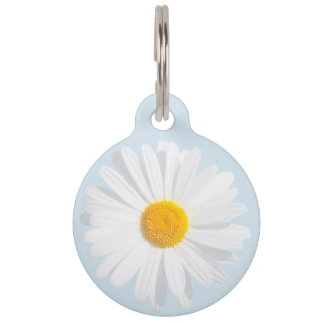 white daisy pet ID tag