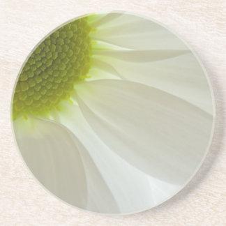 White Daisy Petals Beverage Coaster