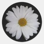 White Daisy Round Stickers