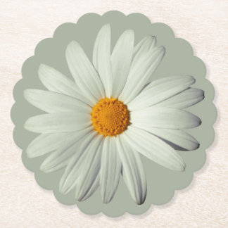 White Daisy Scalloped Round Paper Coaster