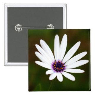 White daisy square button