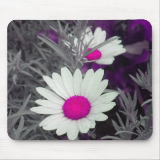 White Daisy (w Pink) mousepad