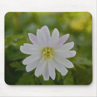 White Daisy with a hint of Purple Mouse Pad