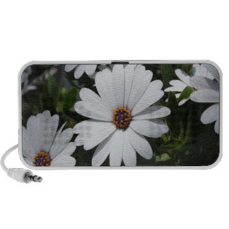 White Daisy's in Bloom Travelling Speakers