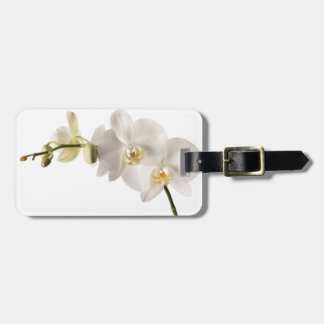 White Dendrobium Orchid Flower Spray Floral Blank Luggage Tag