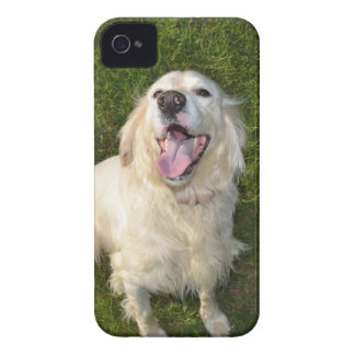 White Dog Case-Mate iPhone 4 Cases