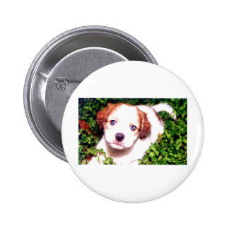 White Dog Pins
