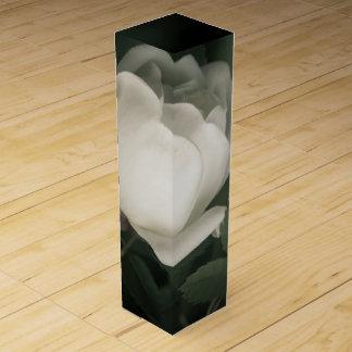 White Dogrose on a Dark Background. Wine Box