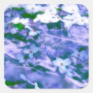 White Dogwood Blossom in Blue Square Sticker