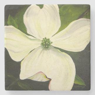 White Dogwood Flower Coaster by Michelle Meyer Stone Coaster