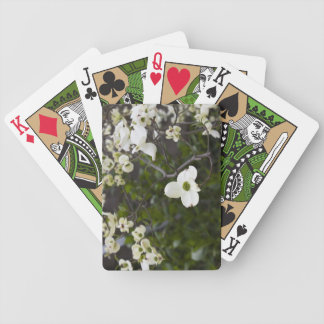 White Dogwood Flowering Tree Card Decks