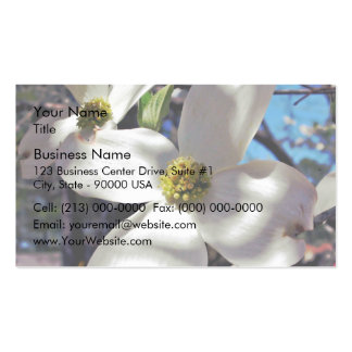 White Dogwood Tree Flowers in shadow Business Card Template