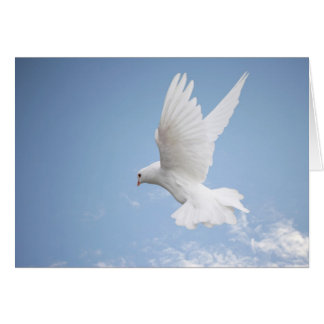 White dove notecard
